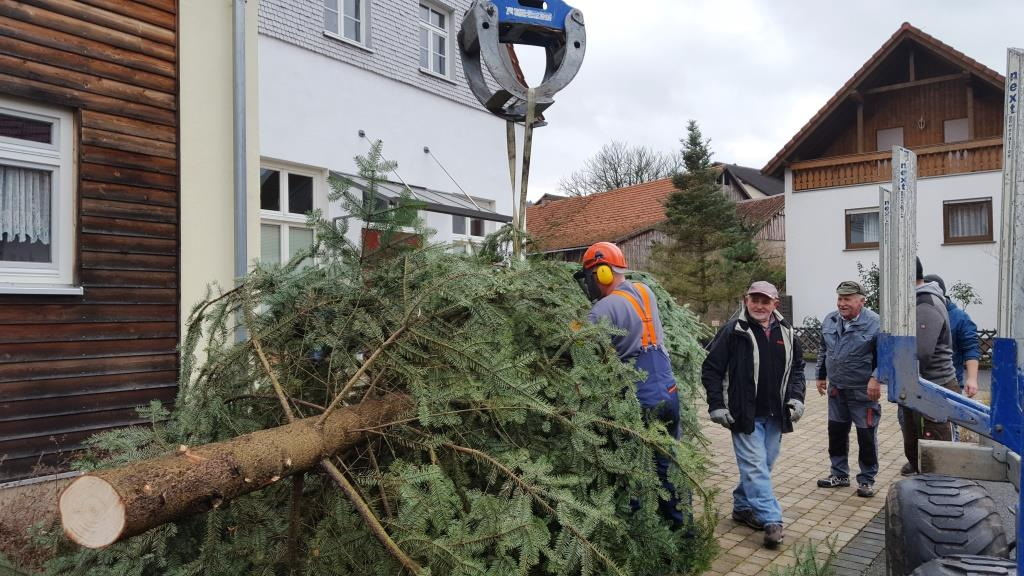 Wann Weihnachtsbaum Aufstellen.01 12 2018 Weihnachtsbaum Aufstellen In Ahl