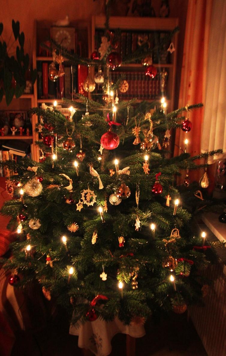 Deutscher Weihnachtsbaum.Bürger Info Weihnachtsbaum